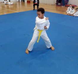 trofeo-gattamelata-karate-csen-venture