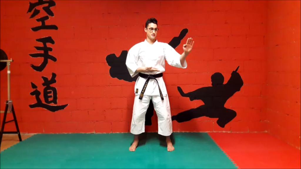 tecniche-karate