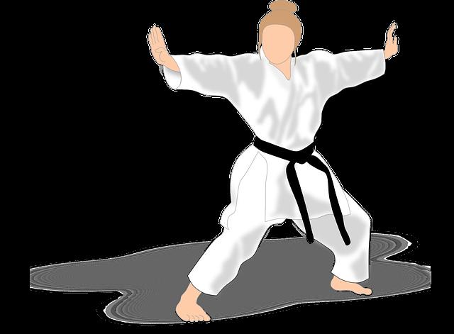 concetti-karate-kata